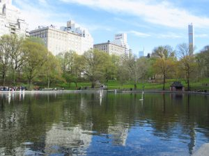 Photo of the model boat pond in Central Park